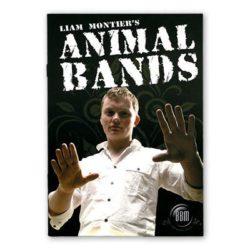 animalbands-full.jpg