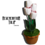 Regeneration Tulip by Himitsu Magic