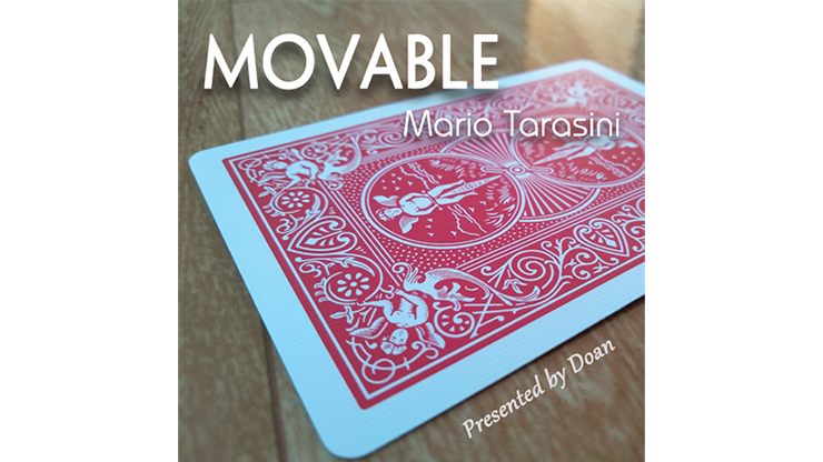 Image result for Movable by Mario Tarasini
